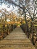 Mesmerizing мост прошлого стоковое фото rf