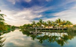 Mesmerizing gorgeous natural landscape view of Memories Caribe hotel grounds Stock Photos