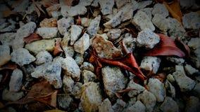 Mesmerizing pebbles Royalty Free Stock Images