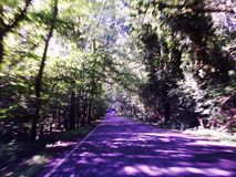 Mesmerizing Roads Purple Shades. Long Drive On Purple Roads Stock Photo