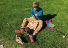 Mesmo a pizza do amor dos pássaros Fotografia de Stock