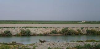 Mesopotamian träsk, livsmiljö av Marsh Arabs aka Madans, Basra Irak royaltyfri bild