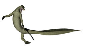 Mesosaurus dinosaur - 3D render Royalty Free Stock Photography