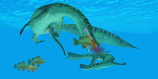 Mesosaurus Marine Reptile Royalty Free Stock Photography