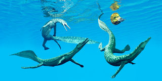 Mesosaurus Marine Reptiles Stock Photo