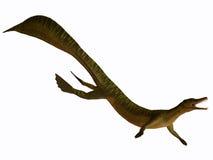 Mesosaurus no branco ilustração do vetor