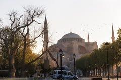 A mesquita azul imagens de stock royalty free