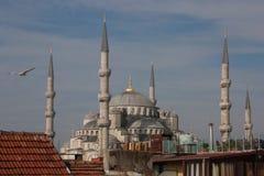Mesquita azul em Istambul, Turquia imagens de stock