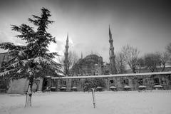 Mesquita azul no inverno foto de stock