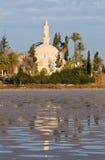 Mesquita de Tekke da sultão de Hala imagens de stock royalty free
