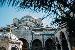 A mesquita de Yeni Cami em Istambul Imagens de Stock Royalty Free