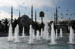 Mesquita, fonte e pássaros azuis fotos de stock