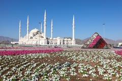 Mesquita grande em Fujairah, UAE Fotos de Stock Royalty Free