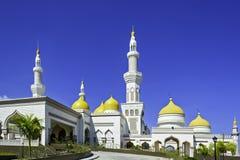 Mesquita grande nova Fotos de Stock