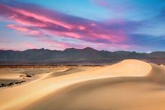 mesquite дюн Стоковые Изображения RF