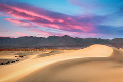 Mesquite Dunes Royalty Free Stock Images