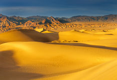 Mesquite Dunes at dawn Royalty Free Stock Photo
