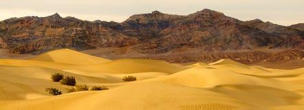 Mesquite Dunes at dawn Stock Photo