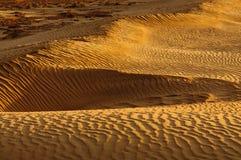 Mesquite Dunes Stock Photography