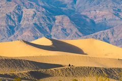 Dunes in Death Valley, California, USA Stock Images