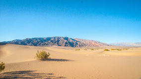 Mesquite Dunes in Death Valley Stock Photography