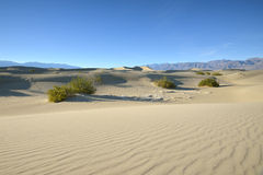Mesquite Dunes in Death Valley National Park Stock Photos