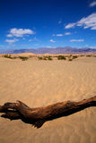 Mesquite Dunes desert in Death Valley National Park Stock Images