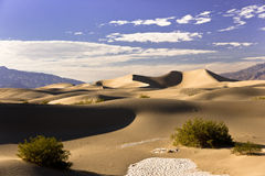 Mesquite Dunes Sandscape Stock Photo