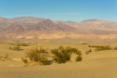 Mesquite Flat Dunes Death Valley Royalty Free Stock Images