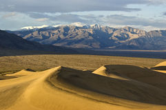 Mesquite Flat Sand Dunes Stock Images