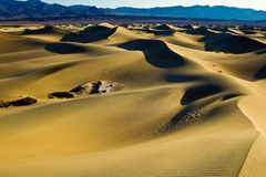 Mesquite Flat Sand Dunes Stock Photography