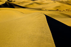 Mesquite Flat Sand Dunes Royalty Free Stock Image