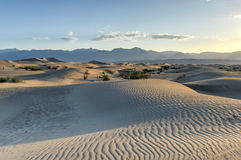 Mesquite Flat Sand Dunes, Death Valley Stock Image