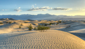Mesquite Flat Sand Dunes, Death Valley Royalty Free Stock Photos