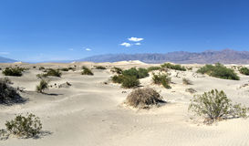 Mesquite Flat Sand Dunes, Death Valley Royalty Free Stock Images
