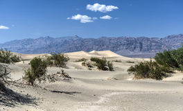 Mesquite Flat Sand Dunes, Death Valley Stock Photos