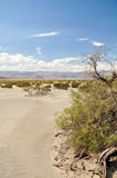 The Mesquite Flat Sand Dunes. In Death Valley National Park, USA Royalty Free Stock Image