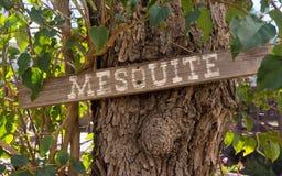 Mesquite znak na Mesquite drzewie Obrazy Stock
