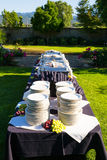 Messa a punto di festività di banchetto di nozze Fotografia Stock