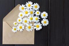 Message émotif de fleur Images stock
