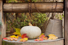 Message from autumn. Leaves, walnuts and a pumpkin on an old well Royalty Free Stock Photo