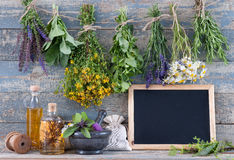 Message board and various fresh herbs Stock Photos