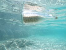 Message in a bottle. Floating in the sea, Glass bottle with sand and help message in the water Stock Image