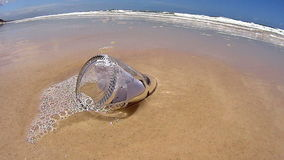 Message Bottle In Sand. Message in a bottle stuck in the sand on the beach stock video footage