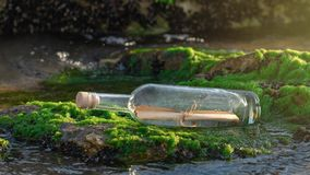 Message in a bottle on a stone covered with seaweed. Message in a corked bottle on a stone covered with seaweed stock image