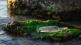Message in a bottle on a stone covered with seaweed. Message in a corked bottle on a stone covered with seaweed royalty free stock photos