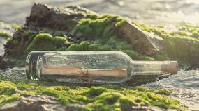 Message in a bottle on a stone covered with seaweed. Message in a corked bottle on a stone covered with seaweed royalty free stock images
