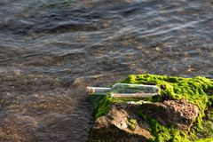 Message in a bottle on a stone covered with seaweed. Message in a corked bottle on a stone covered with seaweed stock images