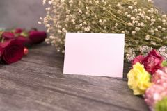 Message cards paper and little white flower for background for greeting cards. Message cards paper and roses for background for greeting cards or template or stock photos
