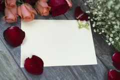 Message cards paper and little white flower for background for greeting cards. Message cards paper and roses for background for greeting cards or template or royalty free stock photography